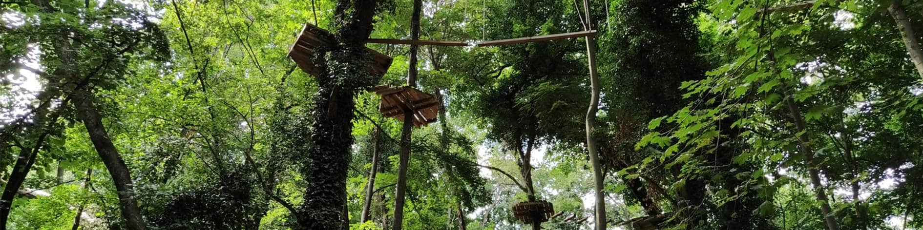 Go Ape activity centre in Ringwood.