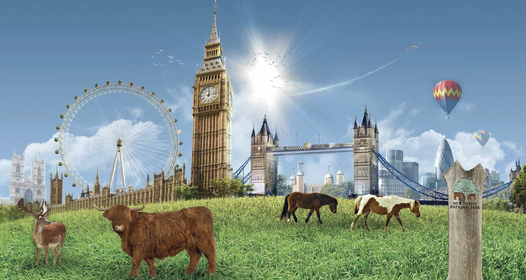 Can we put your home in the London eye?